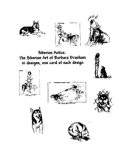 Siberian Husky Antics Note Cards